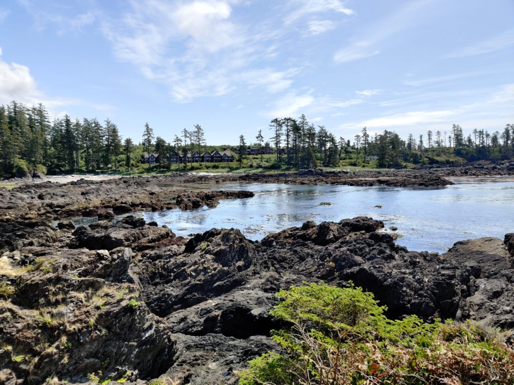 6 Must Do S In Tofino Ucluelet Canada Life Of A Passion